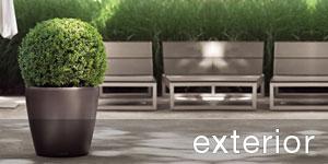 Exterior Office Plants