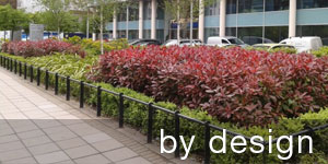 Office Plant Design Service