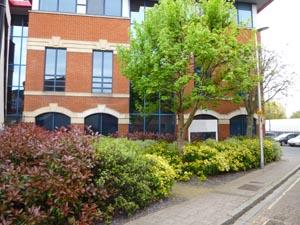 External Office Landscaping