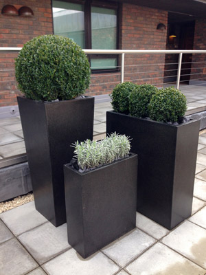 Innovative Planters and Sculptured Planting