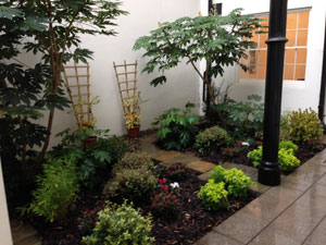 Office Garden Landscaping After
