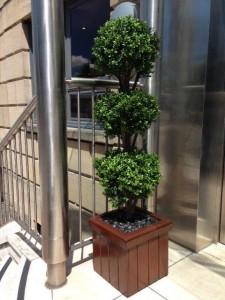 Replica box triple head tree