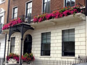 Window boxes, Mayfair, London
