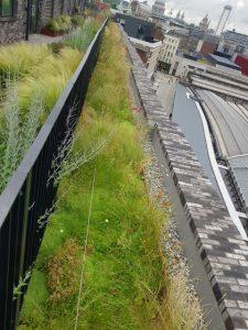 City of London Roof Garden