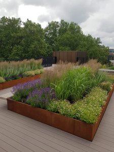 London Office Rooftop Garden Landscaping