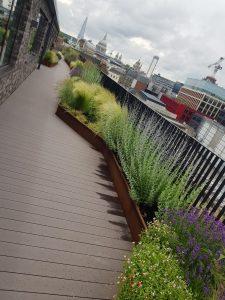 London Roof Garden Landscaping