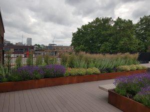 Roof Terrace Landscape Garden in London
