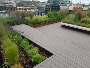 Roof-top Garden for London Office